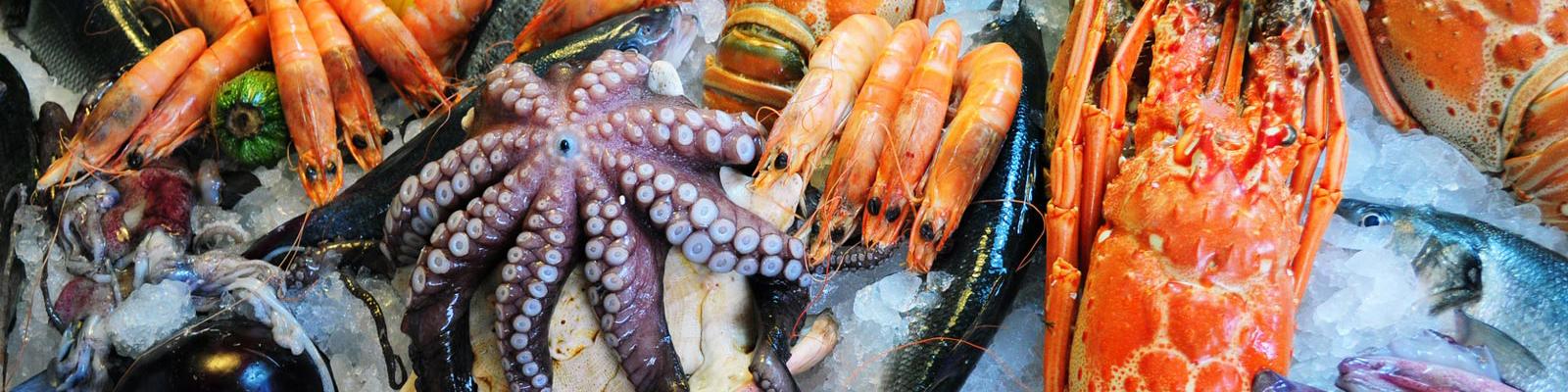 Productos - Toscamare, congelados frescos del mar